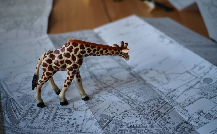 A toy giraffe on a historic city map